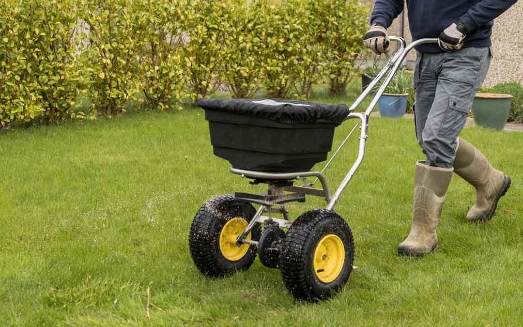 man protecting lawn using fertilizer spreader